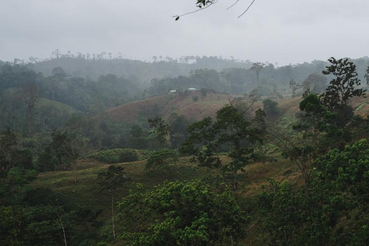 Ich blicke bei tropischem Nieselregen zurück auf die Finca, wo wir soeben waren.