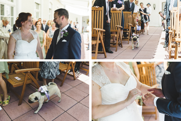 Collage aus vier Fotos, Hund bringt Ringe, Braut steckt Bräutigam Ring an