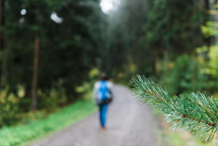 Willi Weitzel spaziert im Waldgebiet Christenberger Talgrund
