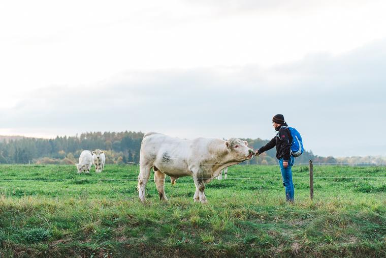 Willi Weitzel füttert ein Tier
