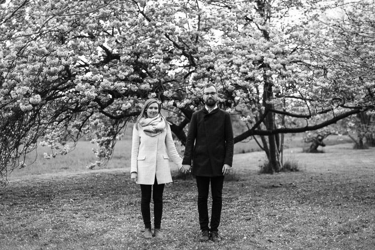 Berliner Paar steht vor japanischer Kirsche
