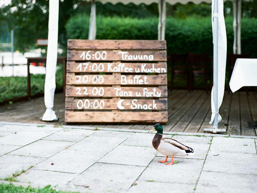 Ente läuft vor Schild