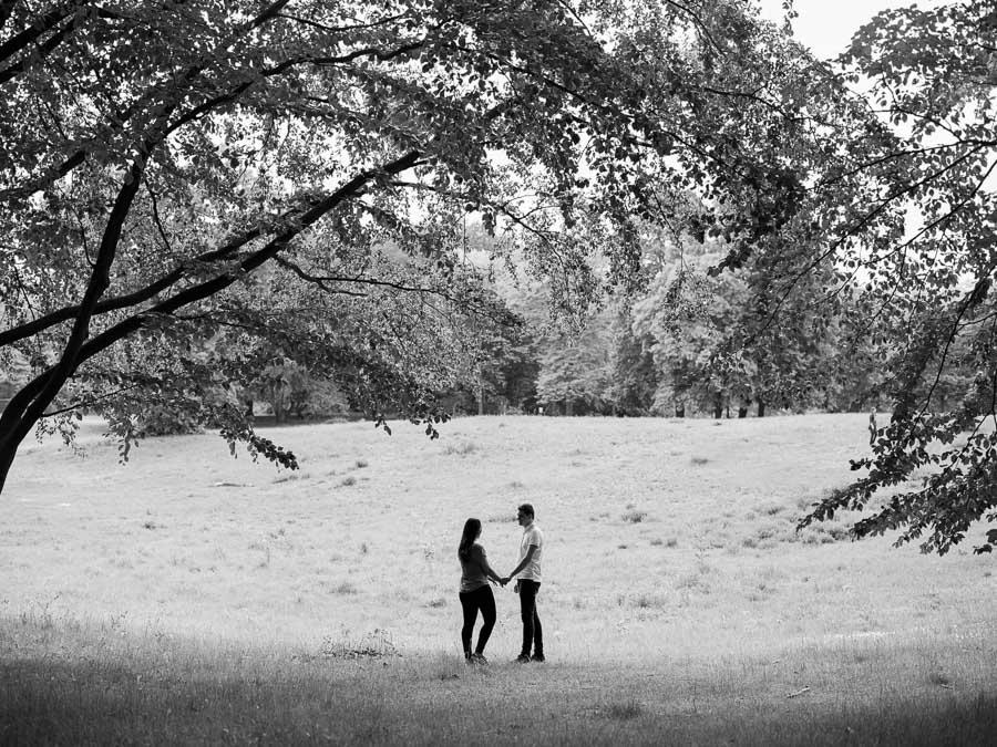 Verlobte auf Wiese