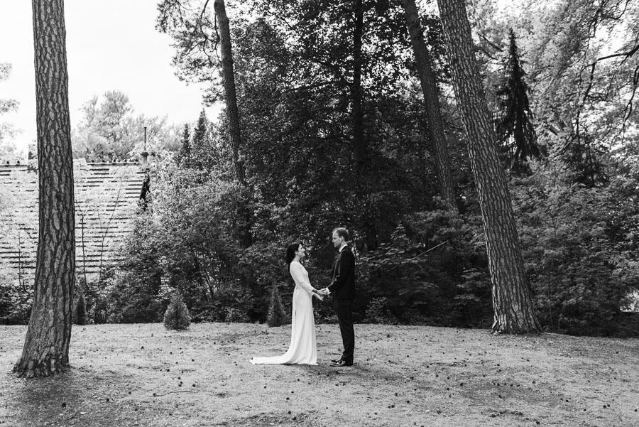 Hochzeitsfoto zwischen Birken