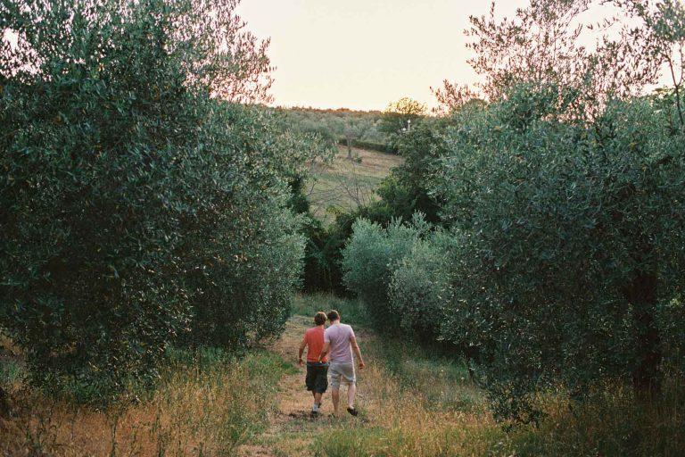 Hochzeit in italienischen Olivenhügeln